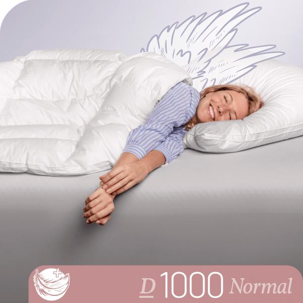 Schlafstil Eiderdaunenbettdecke D1000, Normal, Titelbild