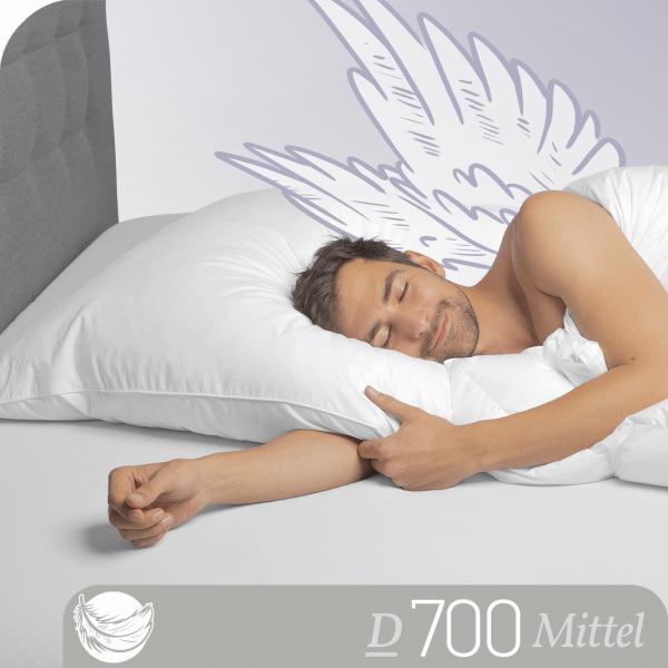 Schlafstil 3-Kammer Gänsedaunenkissen D700, Titelbild
