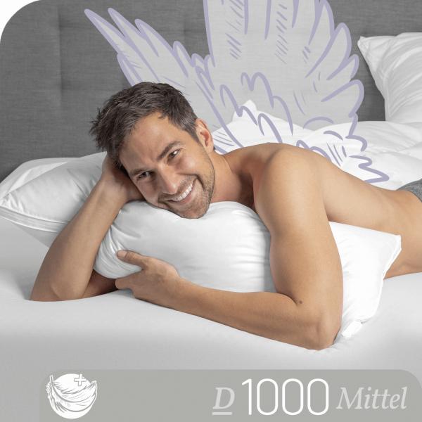 Schlafstil 3-Kammer Gänsedaunenkissen D1000, Titelbild