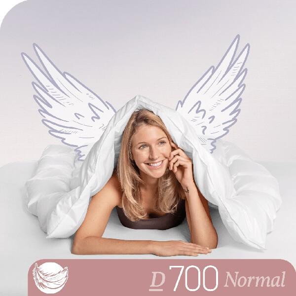 Schlafstil Gänsedaunenbettdecke D700, Normal, Titelbild