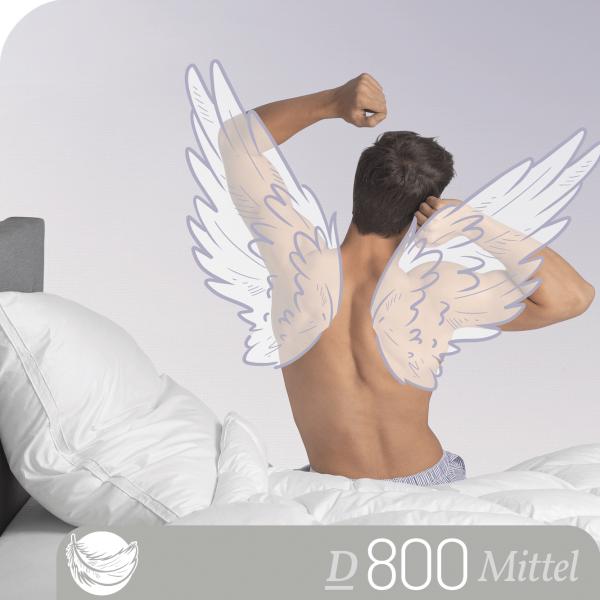 Schlafstil 3-Kammer Gänsedaunenkissen D800, Titelbild