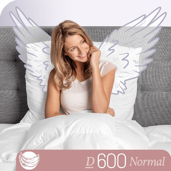 Schlafstil Gänsedaunenbettdecke D600, Normal, Titelbild