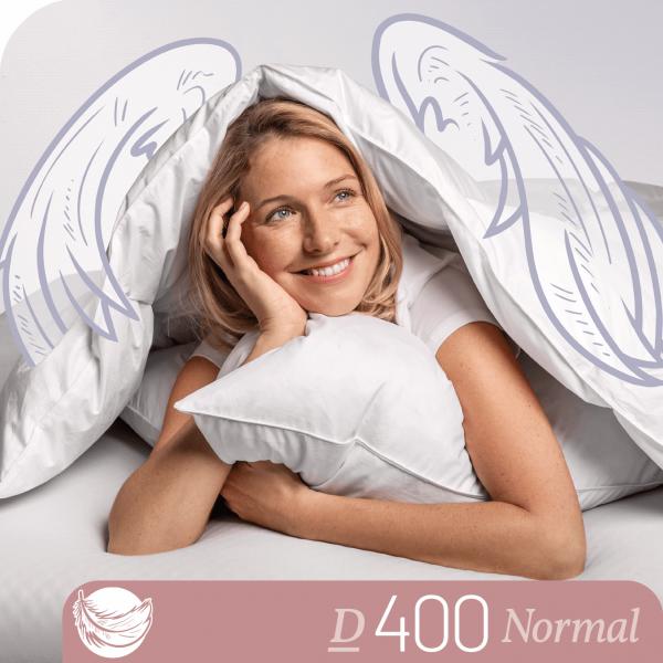 Schlafstil Daunenbettdecke D400, Normal, Titelbild